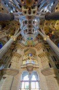 Ceiling of La Sagrada Família - Barcelona, Spain