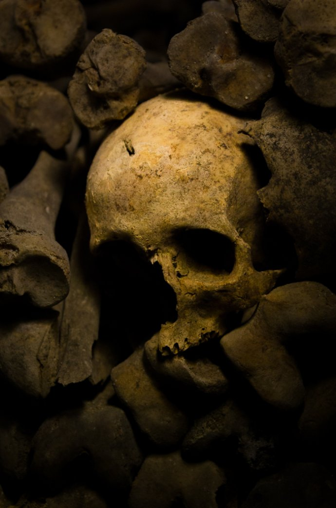Skull at the Catacombs of Paris - Paris, France